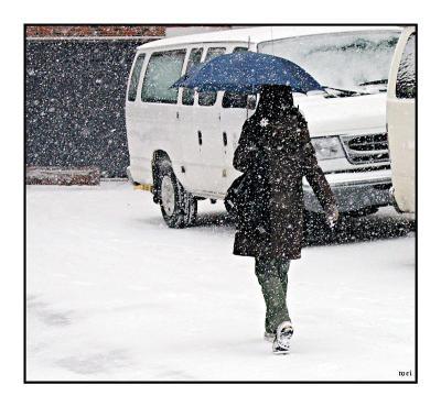 11 -- Snowing again