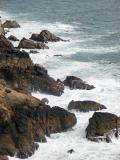 Point Reyes Rocks & Waves