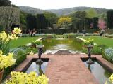 Filoli Garden View