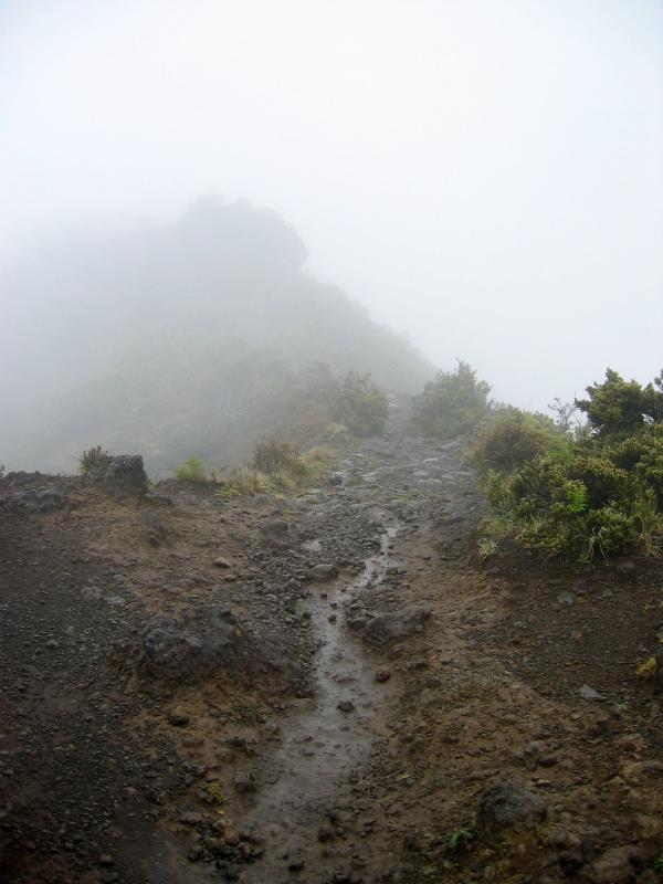 Rocky trail into the fog