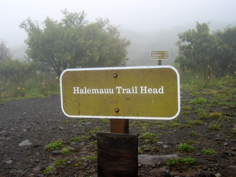 Halemauu trailhead (7,990 ft.)
