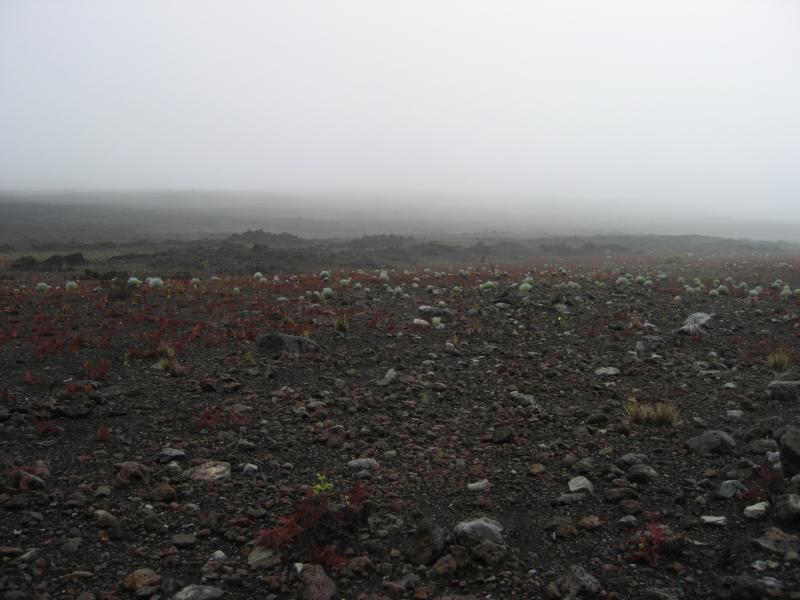 Haleakala0076