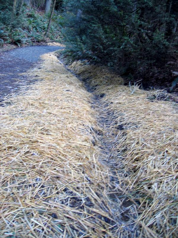 Hay lined drainage