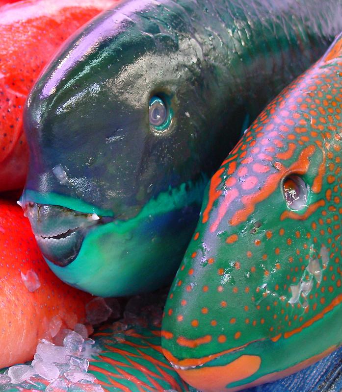 Naha Fish Market