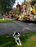 Joop's Dog Log - Saturday September 04