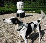 Joop's Dog Log - Sunday September 26