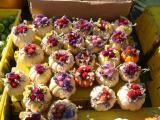 Green Market Miniature Bouquets