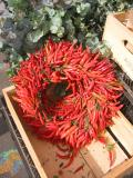 Red Pepper Wreath
