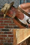 Chain Saw Artist