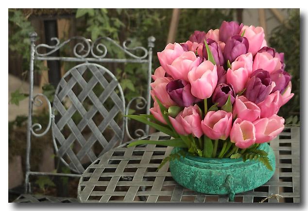 Tulips184_RT8-copy_filtered.jpg