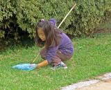 Children catching a butterfly