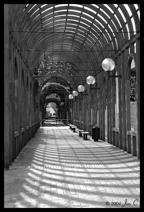Walk through light and shade