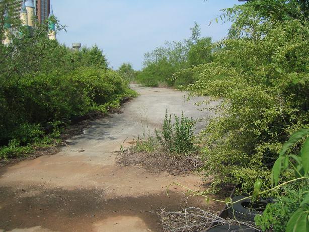 go cart path.jpg