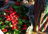 market radishes with traje, guatemala