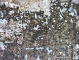 abstraction with staples, antigua, guatemala