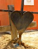 3.17.04 small cemetary heart 2.jpg
