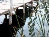 lake morning, santiago atitlan, guatemala