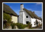 Thatch at Combeinteignhead