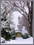 March 11 - More Snow.