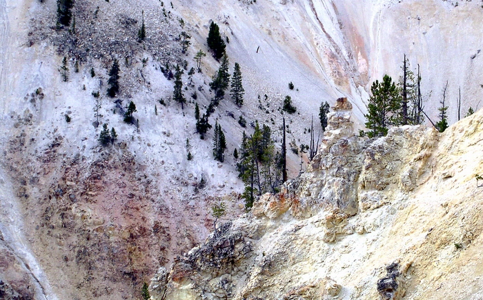 Yellow Stone National Park  Canyon  Colours.JPG