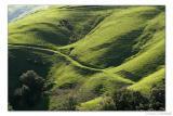 Hills above Cambria