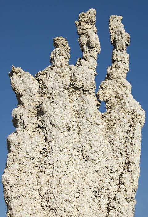 Four fingered tufa