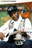 2003 CHICAGO BLUES FESTIVAL