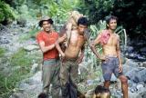Wild pig killed by Mang Binancio and sons