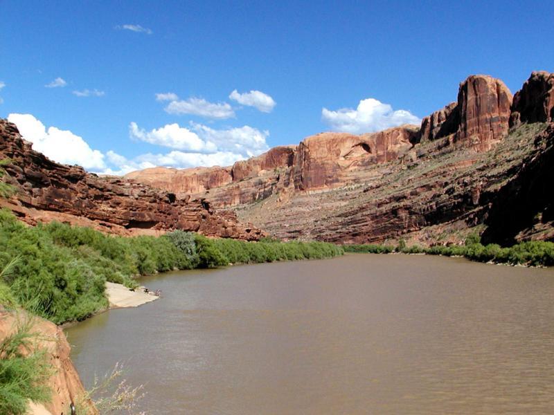 Colorado River Moab Utah.jpg