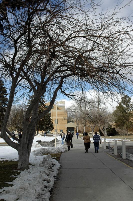 Dry Winter on ISU Campus DSC_2923.jpg
