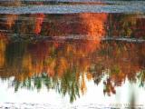 Autumn Reflections  II