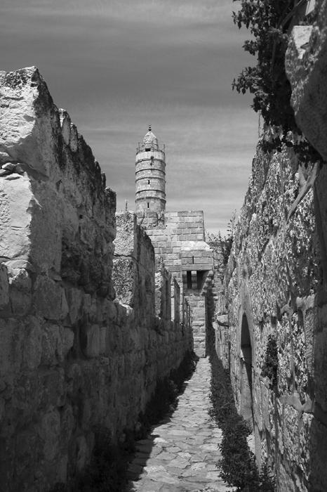 Davids Citadel 4