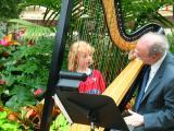 Harp in Botanic Garden