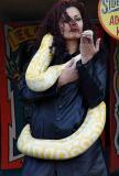 snakecharmer2DSC03823.jpg