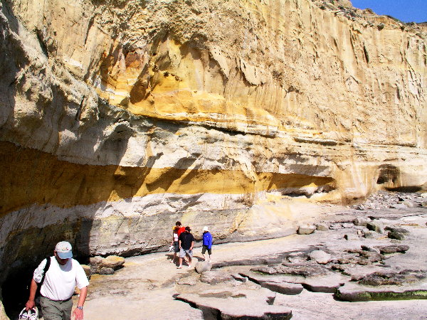 Cliffs of Sandstone - Torrey Pines State Beach