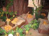 Choux Garden