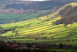 North York Moors, England