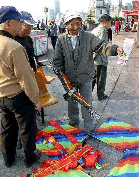 Kite enthusiasts