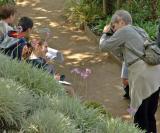 Kate Captures Hosanna.jpg