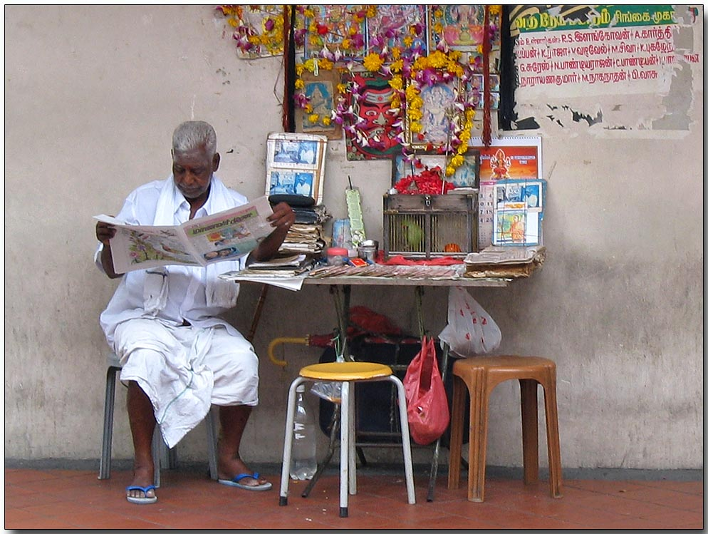 Parrot Astrologer, Little India