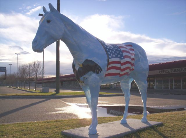 Flag Horse 1