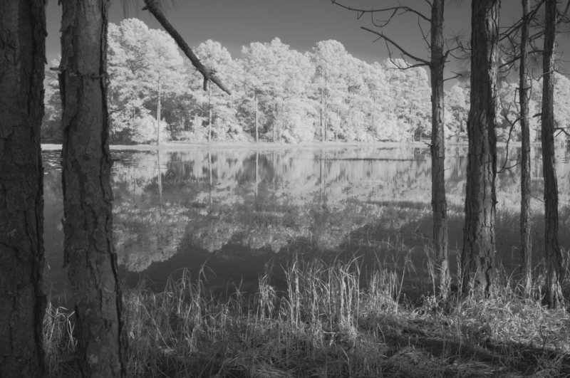 2/05 - Infrared - Deerhaven Lake
