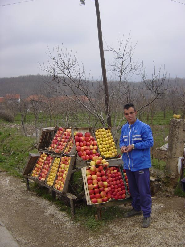 Apple-Seller