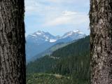Trees Framing Monte Cristo Peaks