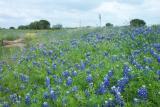 Taken on hwy 152 west of Llano