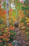 Colorful Portage Trail