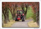 Landworker