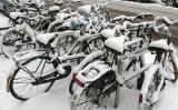 Bikes2005/03/02