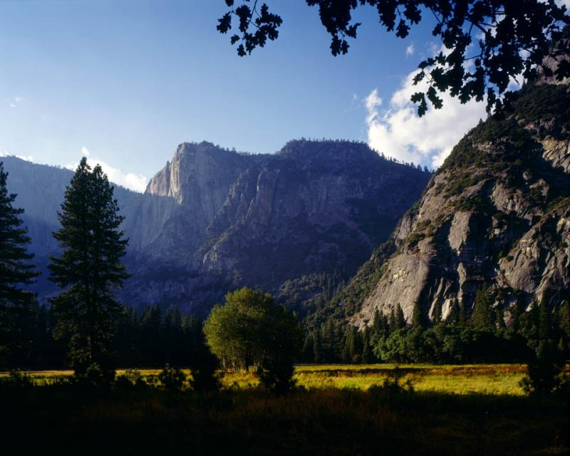 Ahwahnee Meadow [4x5]