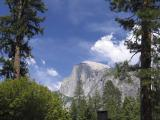 Half Dome from Curry Village [D]